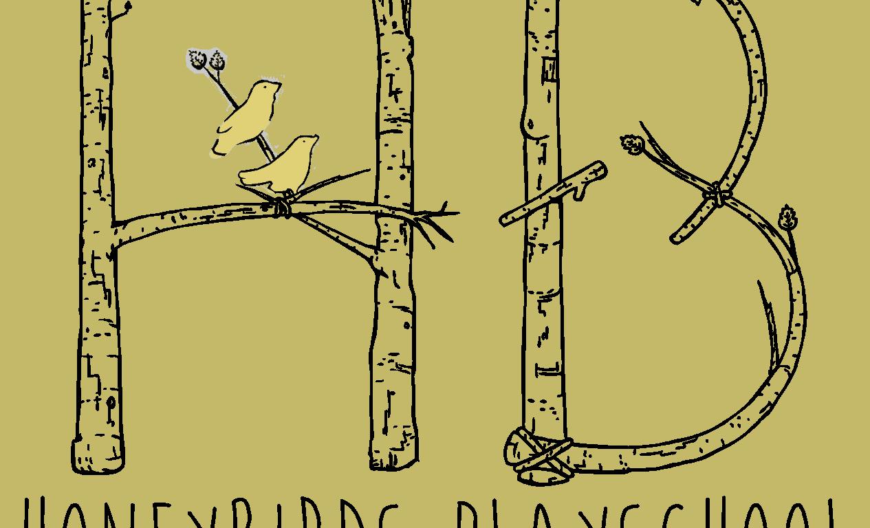 Honeybirds Playschool Adventure Camp