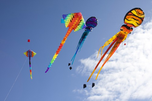 August weekday events kites DP